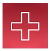 Health Services ICON100